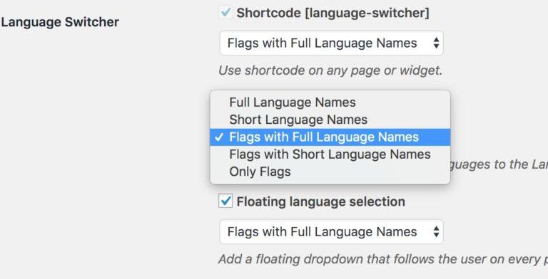 TranslatePress Language Switcher Choices